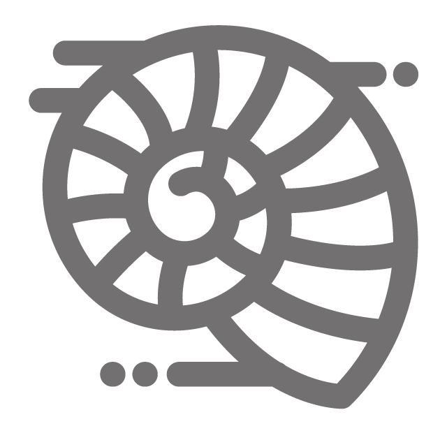 Spiral Fossil Icon