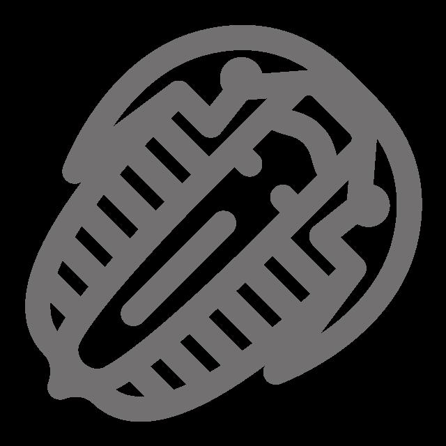 Horseshoe Crab Icon