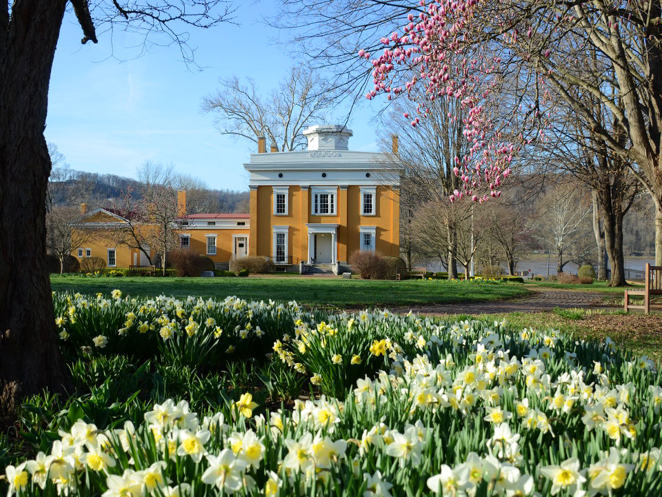 Lanier Mansion and Flowers