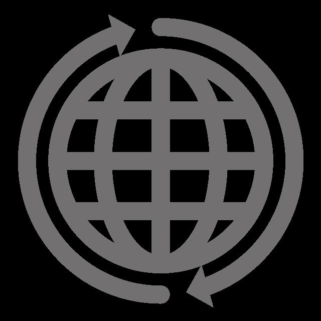 Omni Globe Icon