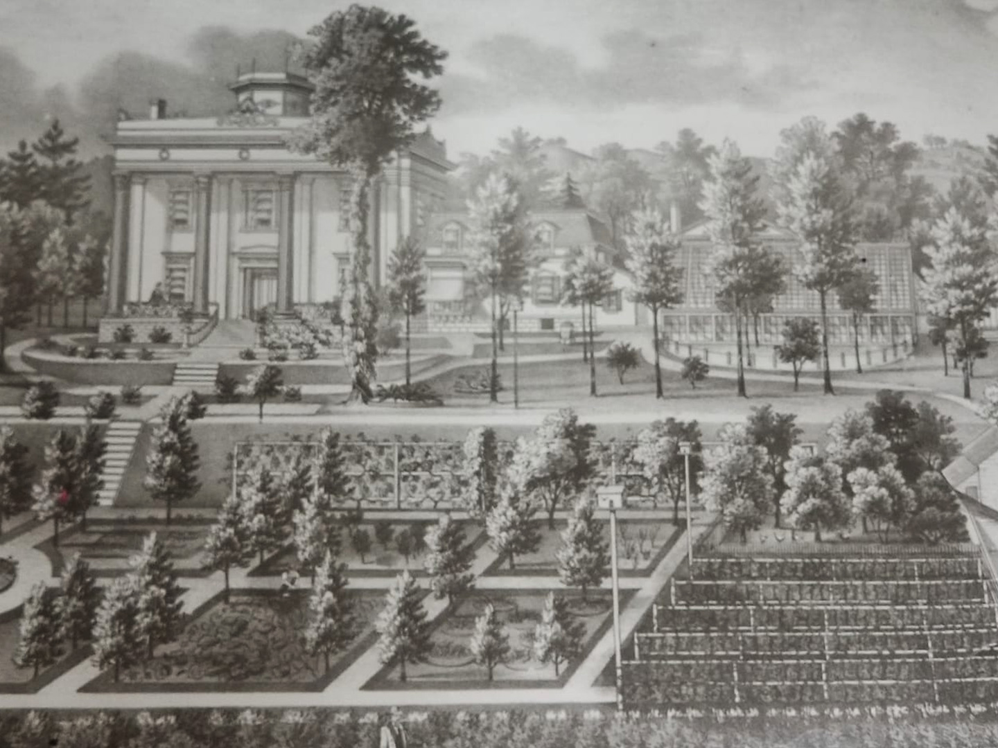 Illustration of Lanier Mansion Grounds