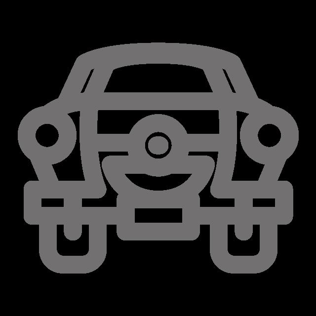 Champion Car Icon