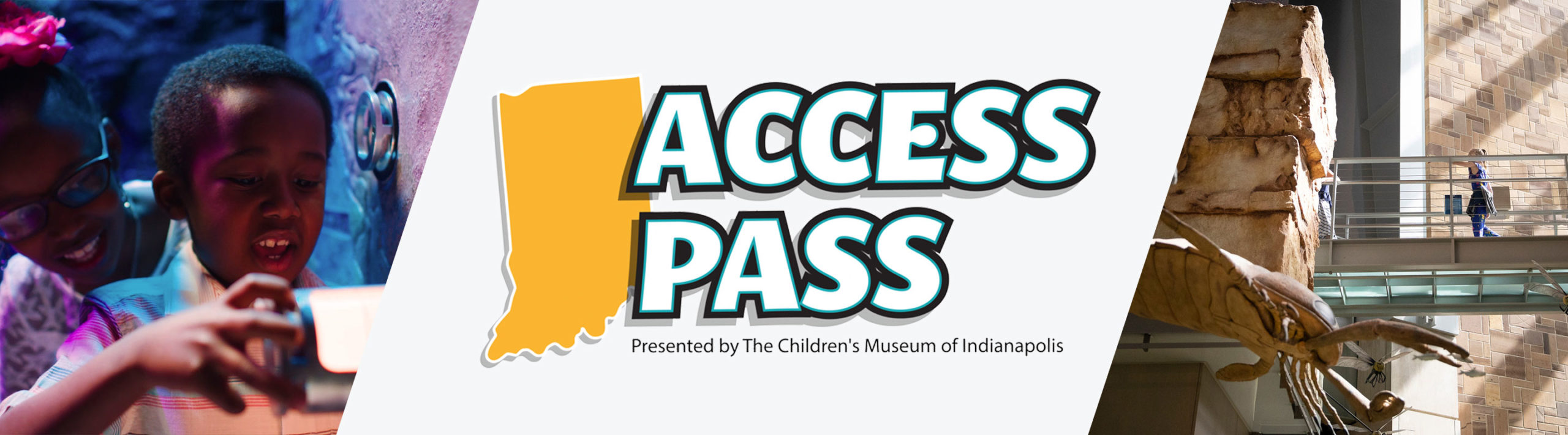 Access Pass Header